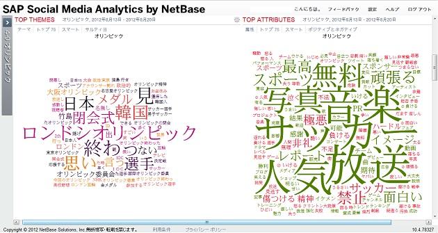 SAP Social Media Analytics by NetBase