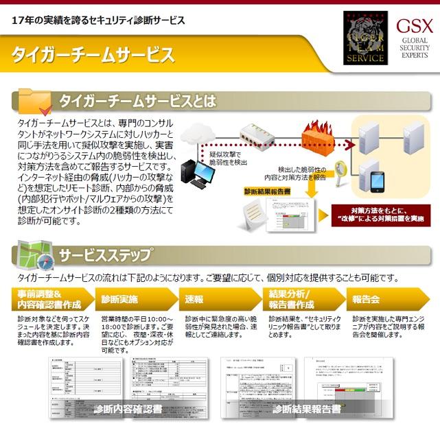 Web脆弱性診断 「タイガーチームサービス」