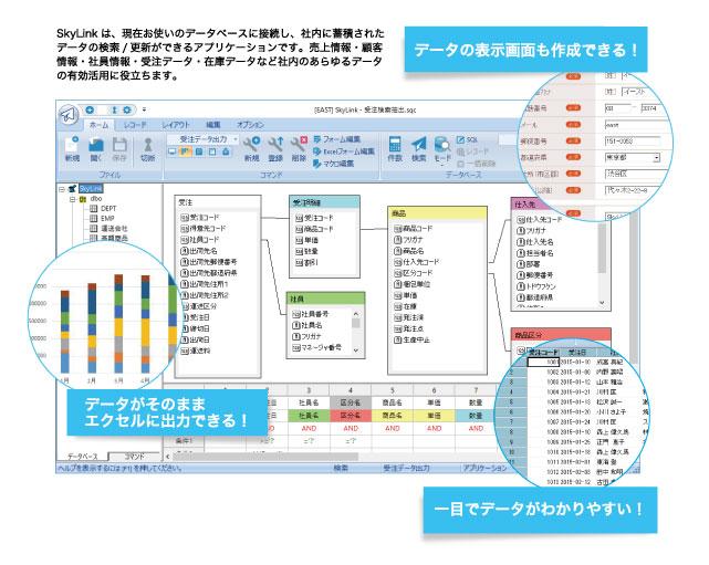 データベース検索/更新ツール SkyLink